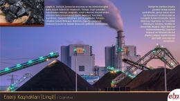 Enerji kaynaklarından Linyit tanıtılmıştır.