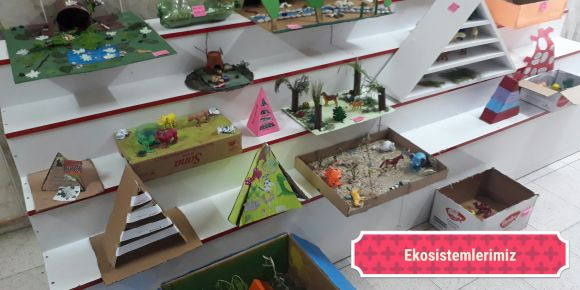 Ekosistem maketlerimiz