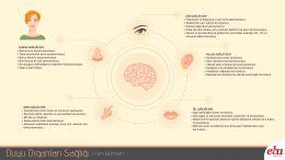 İnsan vücudunda bulunan duyu organlarının sağlığı için yapılması gerekenleri anlatan infografik çalışması
