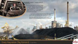 Enerji kaynaklarından olan taş kömürü tanıtılmıştır.