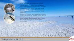 Türkiye' deki madenlerden Tuz tanıtılmıştır.