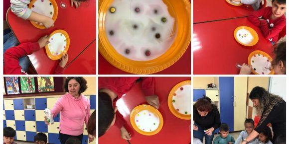 Renkli şekerler ile gökkuşağı deneyi yapıyoruz