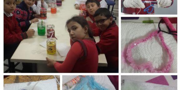 Dört Mevsim STEM  e Twinning Projesi