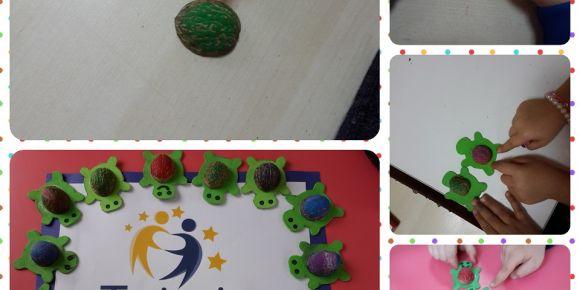 Çilek Anaokulu sümbüller sınıfı doğanın gücü eTwinning projesi