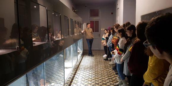Doğa Bilimleri Müzesi gezisi