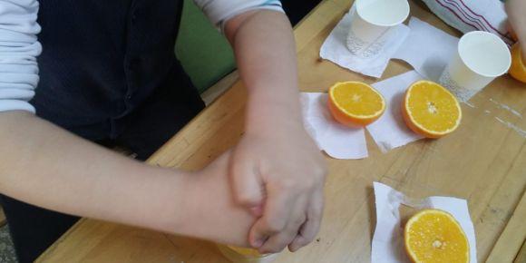 Taze portakal suyu hazırlıyoruz