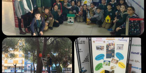 Öğrencilerden sokak hayvanlarına yardımda büyük destek