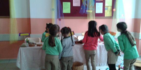 Yerinden Heryere Sevgiyle Projesi Kapsamında 7 Bölgeden Gelen Ürünler Fatsa'da Sergilendi