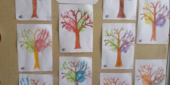 Dünya yeşeriyor hayaller gerçekleşiyor projesi ile ağaçlar yaptık