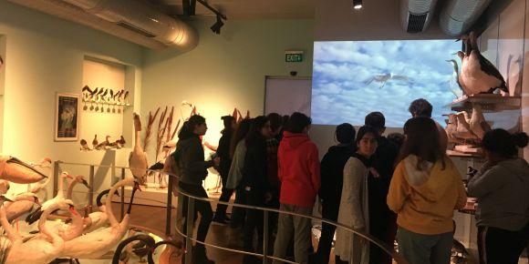 Doğa bilimleri müzesi gezimiz