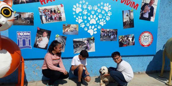 Aydın Didim Valiler ortaokulu 7A sınıfı öğrencileri hayvan barınağını ziyaret ettiler