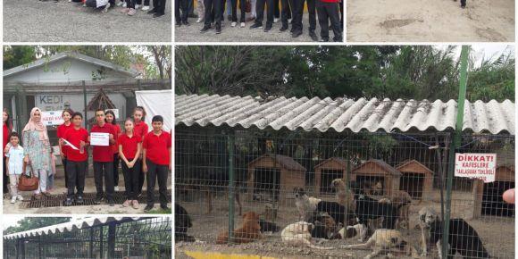 E-twinning Projesi kapsamında hayvan barınağı ziyareti