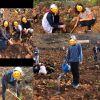 '' Geleceğe Nefes'' ağaç dikme etkinliği