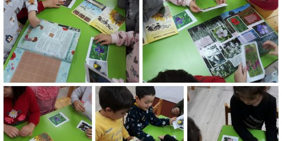 Let's Teach and Learn Stem Projemizin 1. Teması Çevre