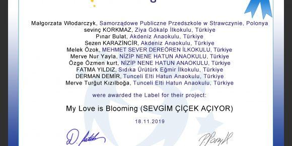 """Eskişehir Ziya Gökalp İlkokulu'ndan """"Sevgim Çiçek Açıyor"""" adlı E Twinning Projesi başladı"""