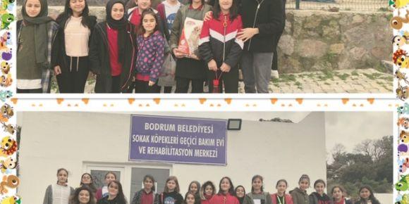 eTwinnerlar Bodrum Belediyesi Hayvan Bakım Evini ziyaret etti