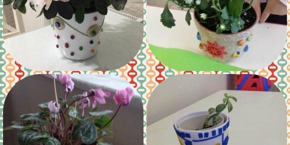 Okullar çiçek açıyor