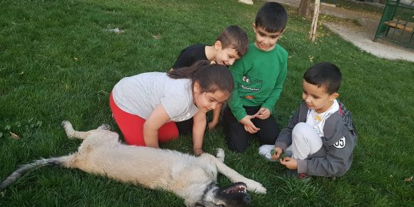 1 İyilik Yap İyilik Bul e Twinning Projesi