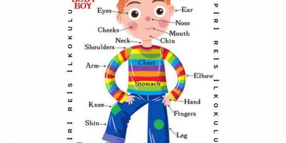 """Piri Reis İlkokulu 1/C Sınıfı eTwinning projesi """"Vücudum Konuşuyor""""onaylanmıştır"""