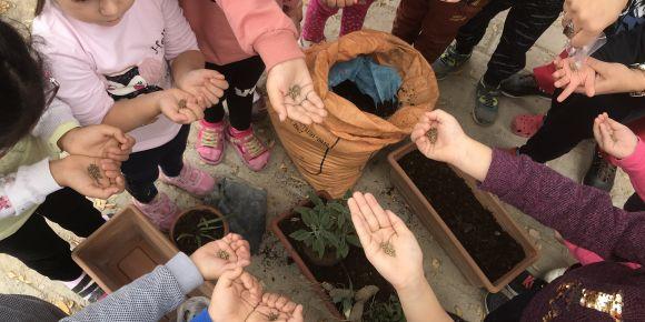 Let's Green Our Classroom eTwinning Projemiz