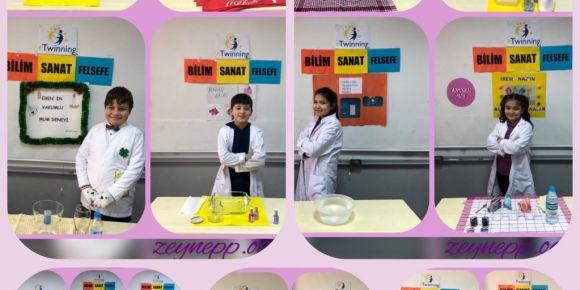 Deney Şenliği/Bilim Sanat Felsefe