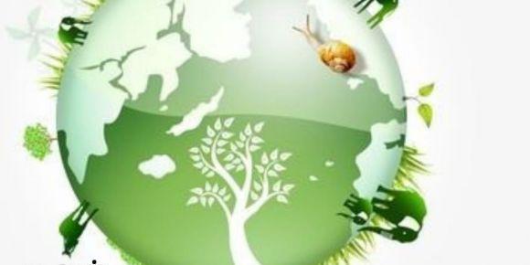 Susuz Fidan, Ormansız Dünya Kalmasın Etwinning Projesi