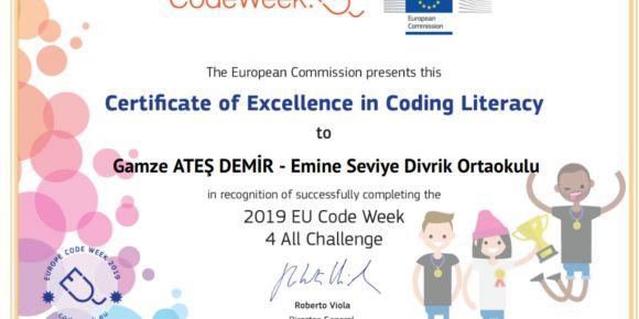 Codeweek Mükemmellik Sertifikası