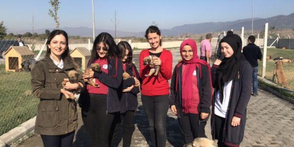 Erbaa Yılmaz Kayalar Fen Lisesi Sadık Dostlarımızı Ziyaret Etti