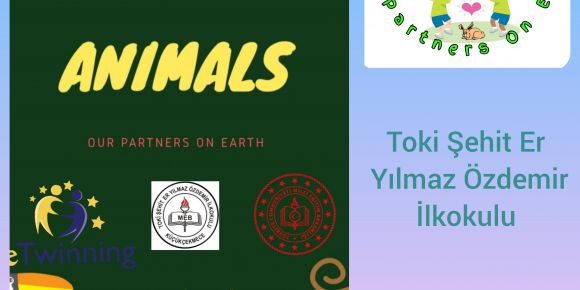 """ANIMALS- Our Partner on Earth"" eTwinning projemiz"